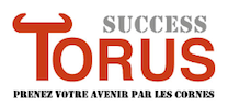 Success Torus